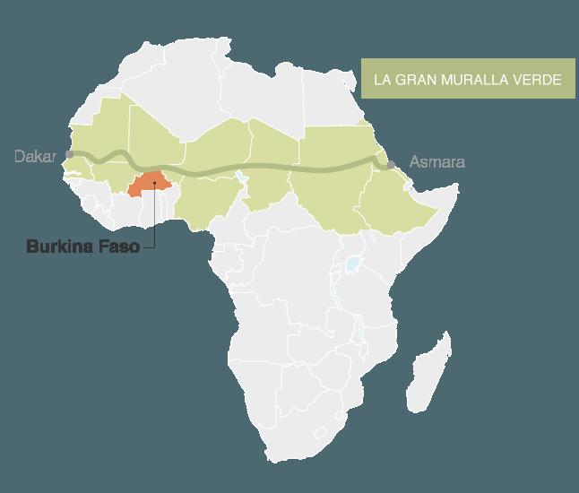 Lince podes navegar en internet y salvar al mundo con Ecosia
